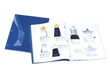 delicate A4 custom brochure printing service with art paper