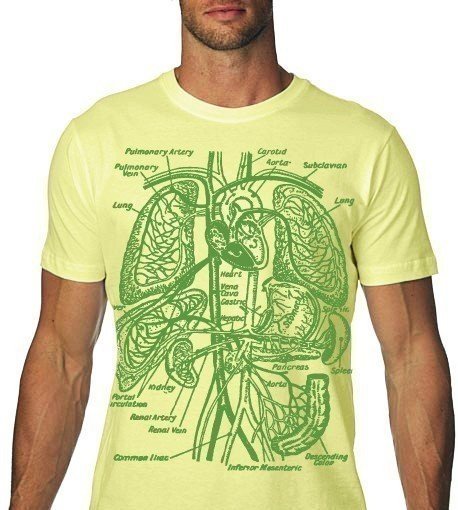 Babbletees Mens Anatomy Organs T Shirt Buy T Shirt Product On