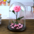 Diameter 9-10cm Preserved Rose Glass Dome Happy Valentine Gifts Rose In Glass Dome
