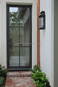 modern style wrought iron doors with french designs
