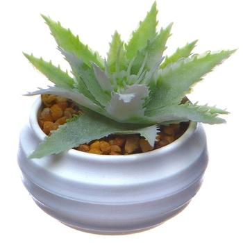 Emulate Succulent Plants Tropical Small Bonsai Home Decoration Plastic Emulation Plant