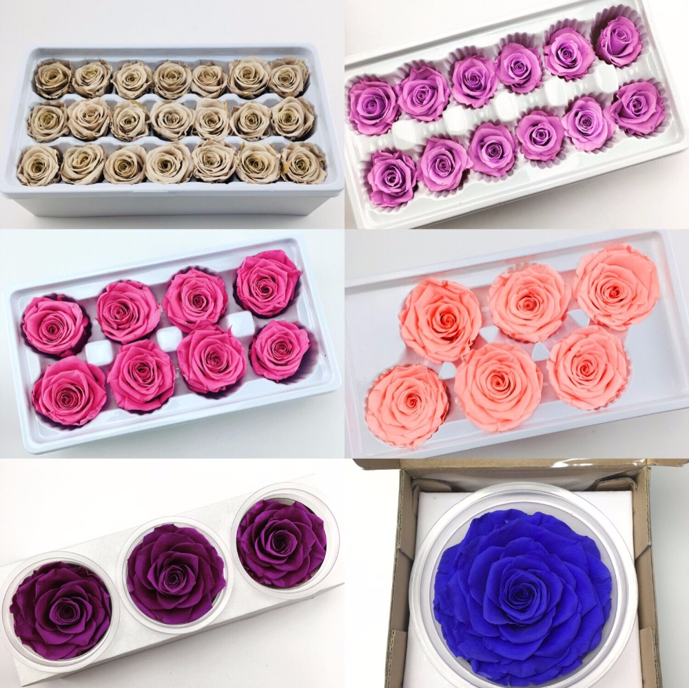 Wholesale Preserved Rose A GRADE Soft Touch Natural Eternal Forever Immortal rose head