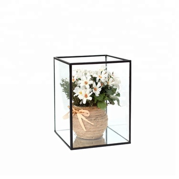 Low Cost Air Plant Cylinder Vase Gl Decoration