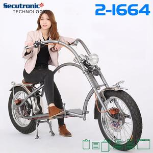 China Online Shopping E-bicycle 1000W Electric Bicycle Reasonable Price