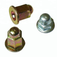 Carbon Steel Long Hex Flange Dome Cap Nut