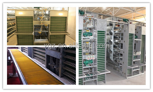 prefab morden automatic commercial chicken house equipment