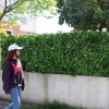 Decorative uv resistant synthetic garden green wall for fence screen