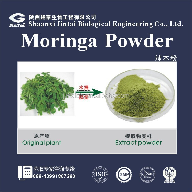 High purity organic moringa powder /moringa oleiferal leaf powder