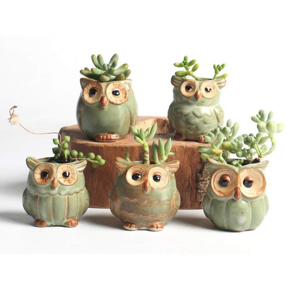 NOVMAY 2.5 Inch - Mini Vintage Owl Ceramic Succulent Plant Pot Planters Flower Pot Container (Dark color (Set of 5 pcs))