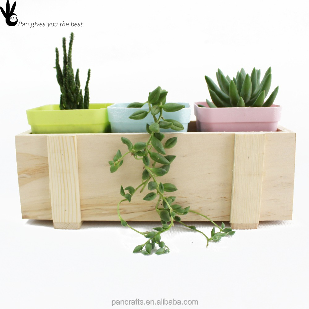 pan hotsale solide bois plantes succulentes pot bac fleurs en bois pour succulent bo tes. Black Bedroom Furniture Sets. Home Design Ideas