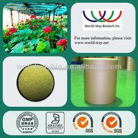 100% Natural ginseng root extract weight loss , ginseng extract weight loss