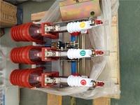HV indoor vacuum load break switch,FZN25-12D/T125-31.5 series
