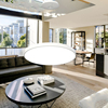 3 Years Quality warranty American style Living Room hanging Modern Aluminium Pendant Light
