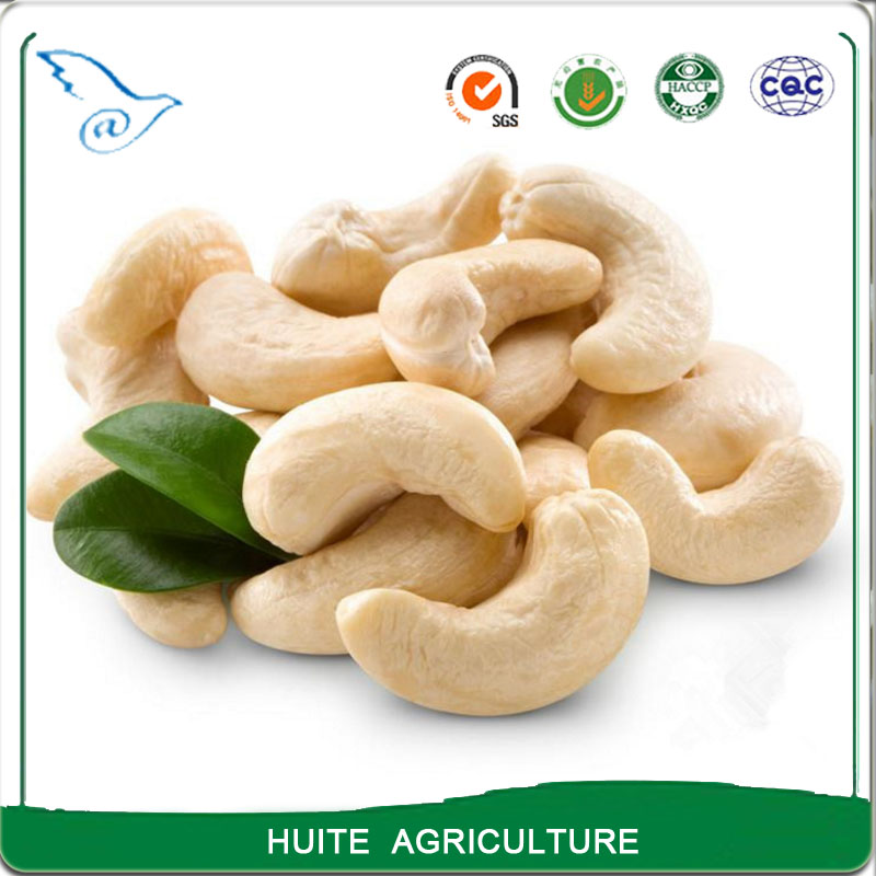 raw cashew nuts sizes