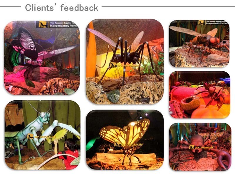 MY Dino-C025 Silicon Rubber Live Insect Model for Sale