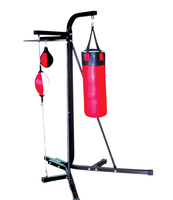 Boxing Stand/Gym Station with Punching Bag