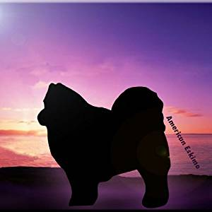 "Rikki Knight RK-8intilec-8400 8"" X 8"" American Eskimo Dog At Sunset Design Ceramic Art Tile"