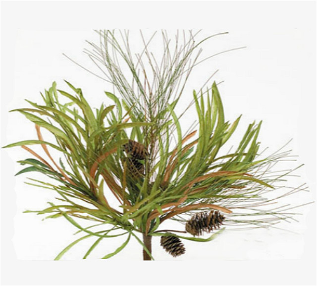 "18"" artificial mixed Pine Needle and cone spray"