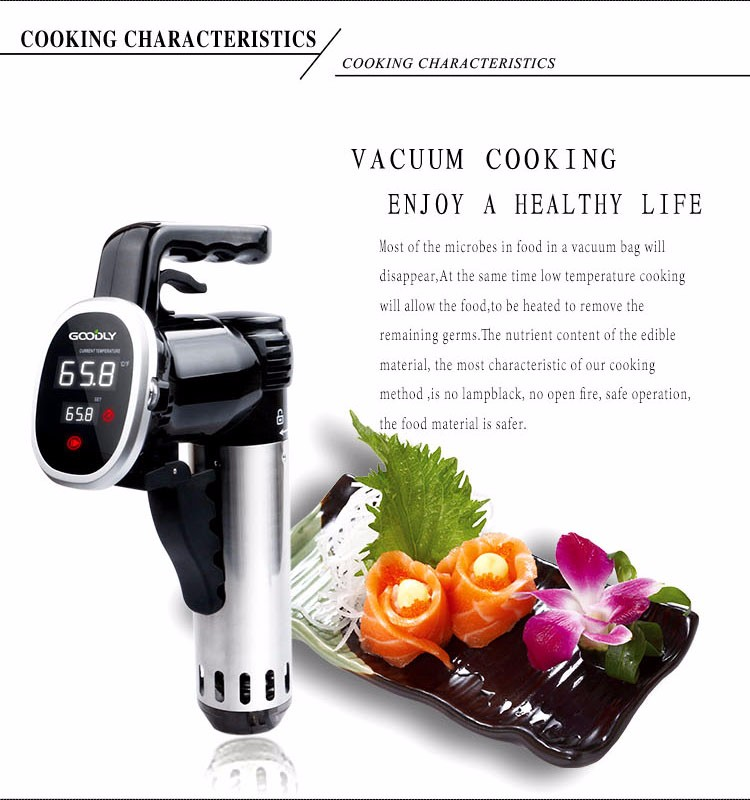 Economical high quality sous vide immersion circulator household slow cooker
