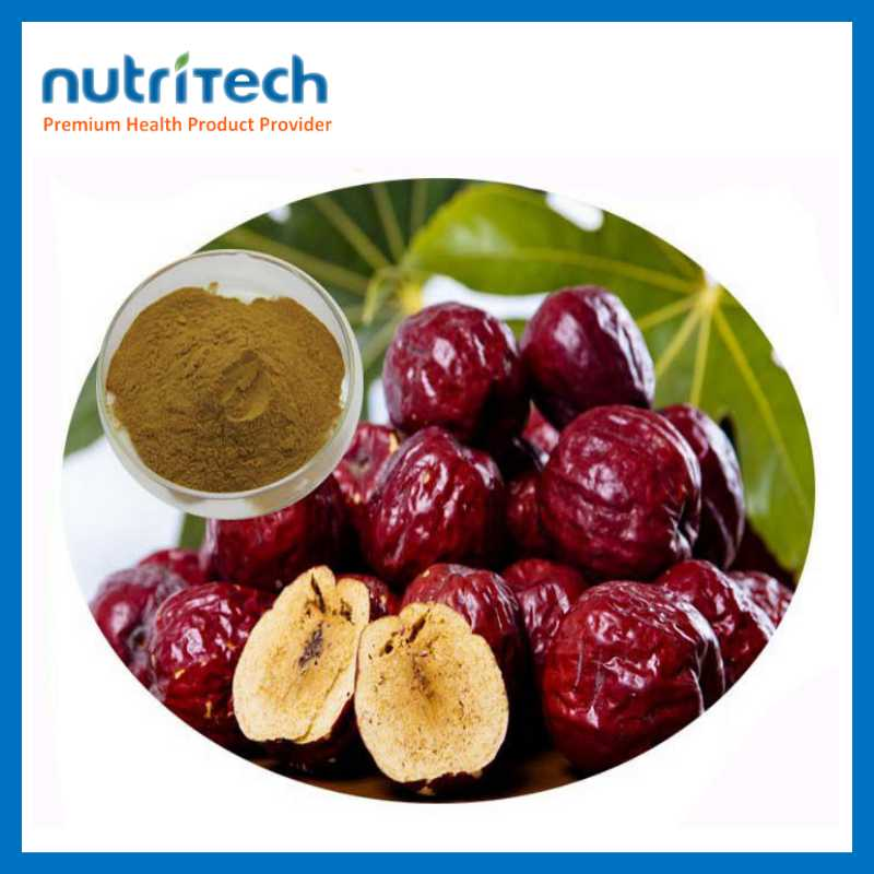 GMP Wholesale Narutal Herbal Extract Chinese Date Extract