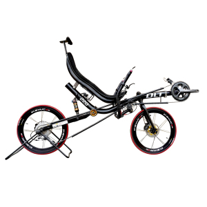 Two Wheel Recumbent Bike