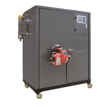 300kg Industrial natural gas steam generator manufacturer china