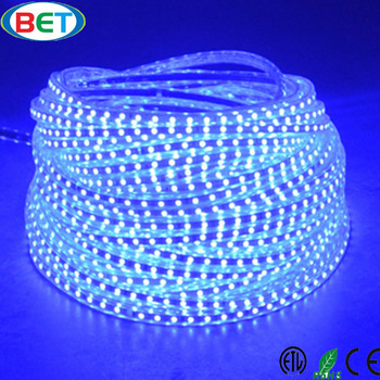 Shenzhen Led Lighting Flexible Waterproof Smd 5050 Strip Ip67 China Product Price List Bd Company