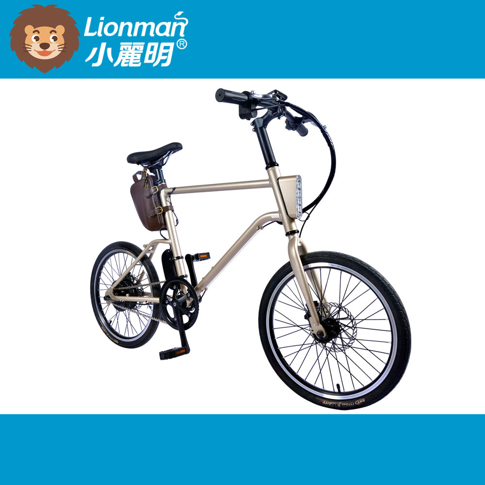 Well Priced motor e-bike electric bicycle
