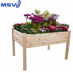Aldi Flowers Whole Suppliers Alibaba