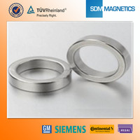 Neodymium Ring Magnet High Standard bldc motor magnets with Strong Magnetic