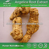China Manufacturer Extract Powder Dong Quai Angelica Root P.E. 4:1 5:1 10:1 20:1