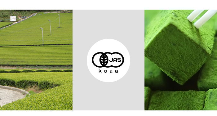 Netto-Gyokuro Tea Leaves Japanese Green Tea Brands Produced in Kagoshima Prefecture
