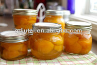 Cheap Canned Apricots Canned Fruits