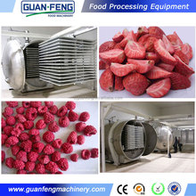 Chinese factory food dehydrator freeze dryer for sale