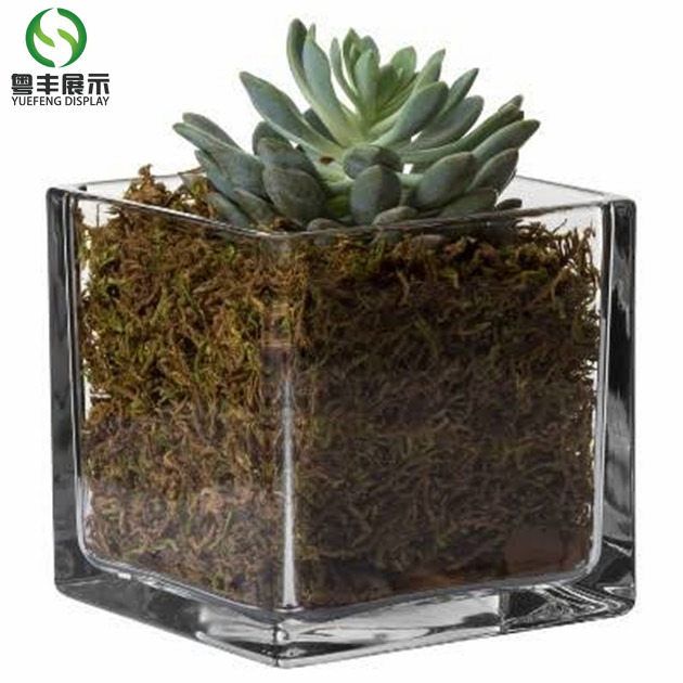 Clear Cube Acrylic Clear Plastic Vase For Holiday Decoration Or Gift