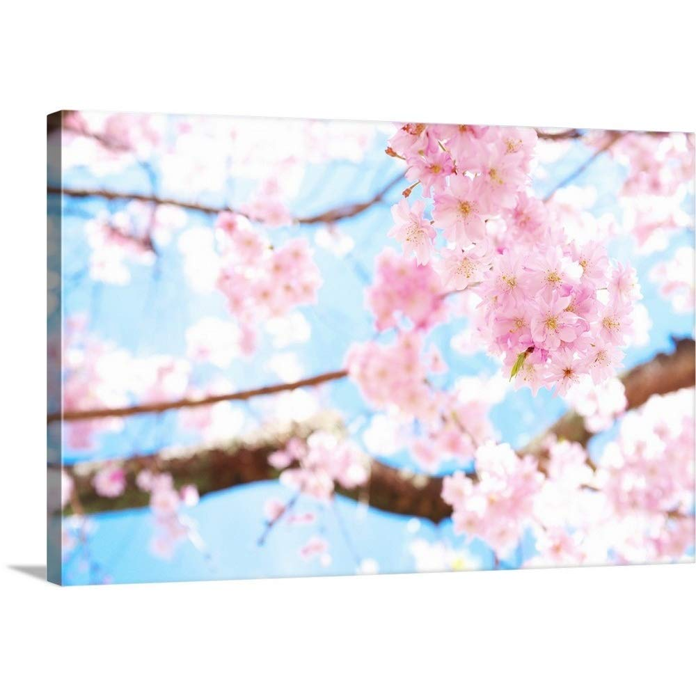 """Gallery-Wrapped Canvas Entitled Cherry Blossoms at Garden, Kyoto by Great Big Canvas 60""""x40"""""""