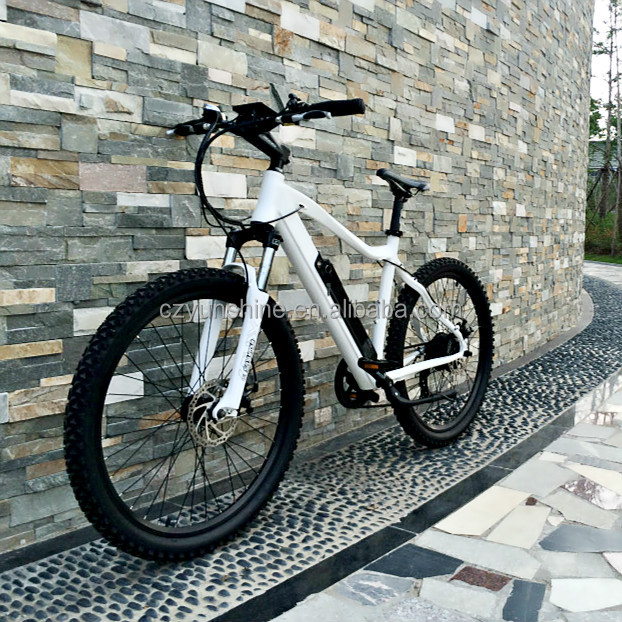 Changzhou Yunshine green power electric bicycle, battery bike with large production capacity