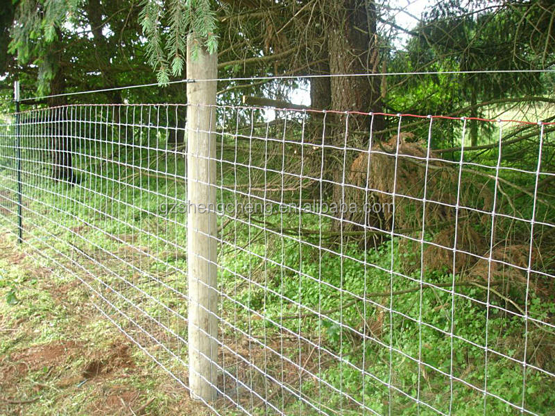 Cheap galvanized wire mesh horse field fencing for animals