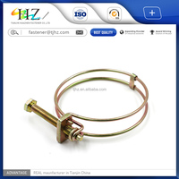 Alibaba online shopping provide American or Germany type double wire hose clamp in Tianjin Huazhen Fastener