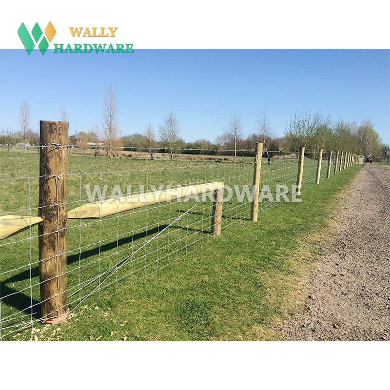 Galvanized Cattle/sheep/horse Woven Hinge Joint Wire Mesh Fence