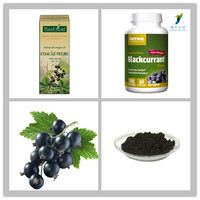 Black Currant Extract with 5%, 10%, 15%, 20%, 25% Anthocyanins,Black Currant Pigment Extract Powder
