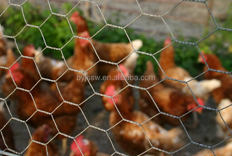 Lowes Chicken Wire Mesh Roll For Sale - Buy Lowes Chicken Wire ...