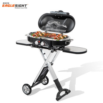 Portable Outdoor Gas Bbq Grill Foldable Barbecue Grill ...