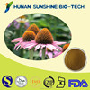 Natural herb extract dried echinacea purpurea / Echinacea liquid extract/echinacea powder