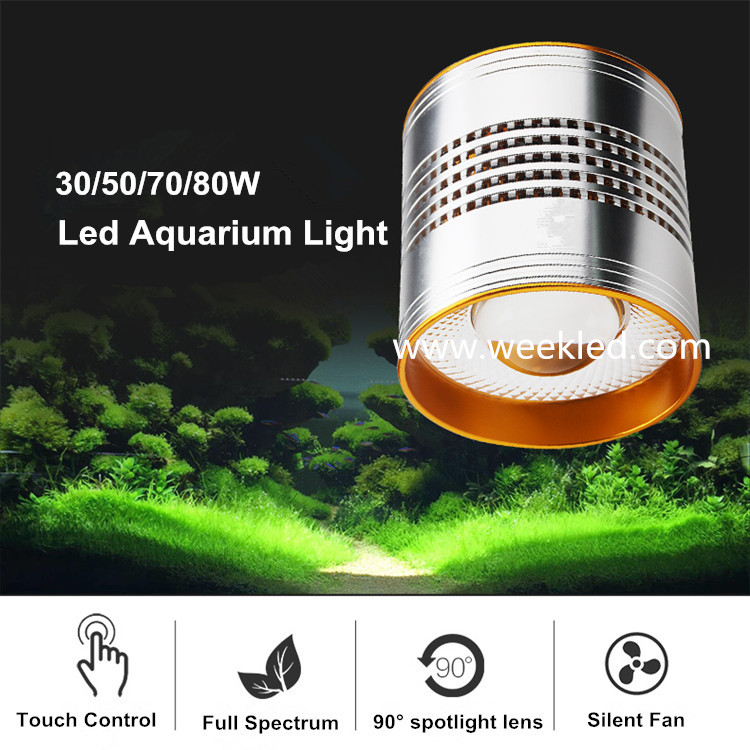 led aquatic lamp