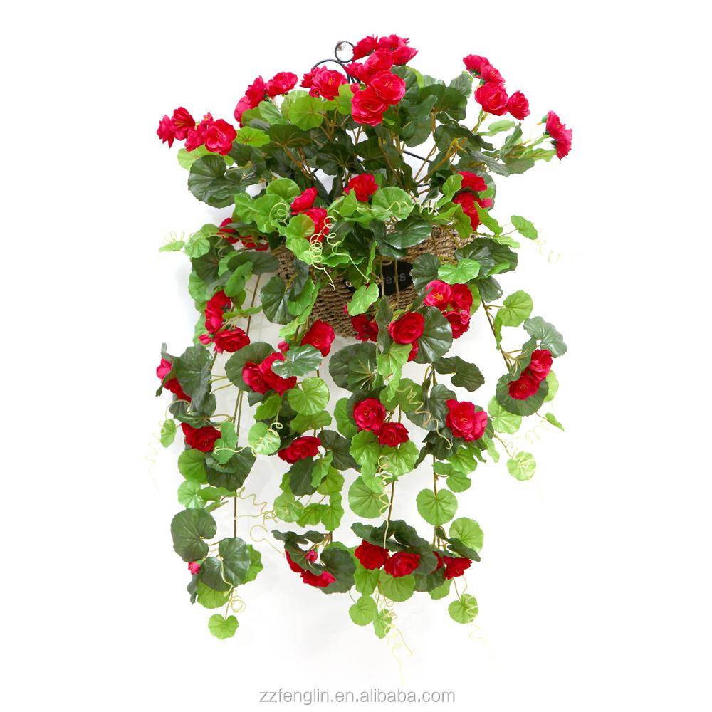 Ext rieur d coratif soie g ranium fleur en gros fleur for Plants de fleurs