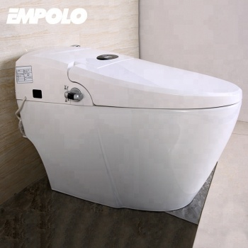 Intelligent automatic smart toilet Water Closet/Female Toilet