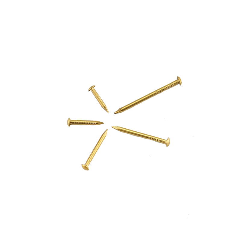 1.5x25mm Furniture Decorative Accessories Wholesale Brass Round <strong>Nails</strong> For Hinge BN-0145