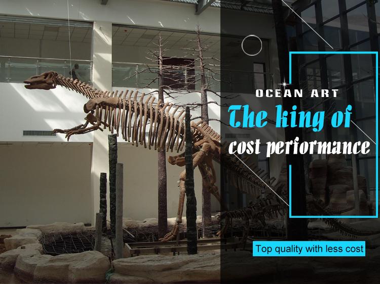 Oah8325 Dinozor Iskelet Hayvan Kafatası Boyama Sayfaları Buy Dinozor Iskeleti Boyama Sayfalarıhayvan Kafatasıammonite Fosil Product On Alibabacom