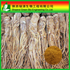Wholesale Chinese Angelica /20% ferulic acid